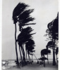 Hurricane Kate, 1985